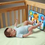 Какие игрушки для новорожденных можно купить в магазине